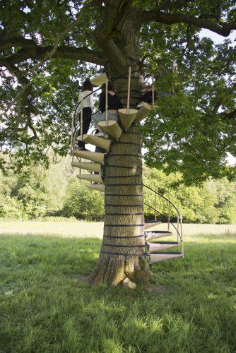 bomen trap