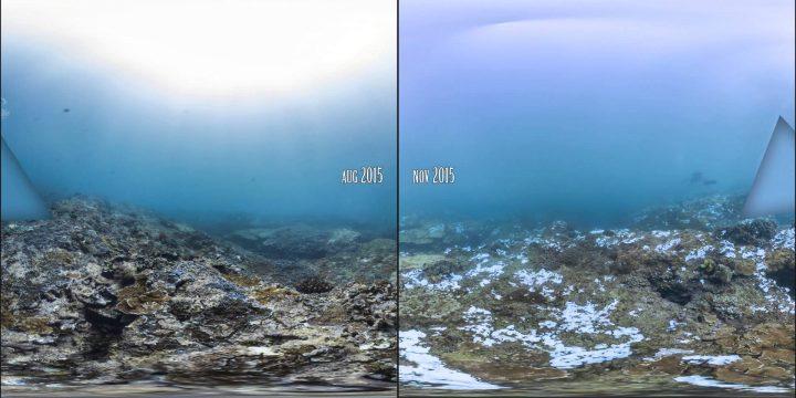 Street View voor oceanen