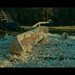 Geboorte van een boomstamkano