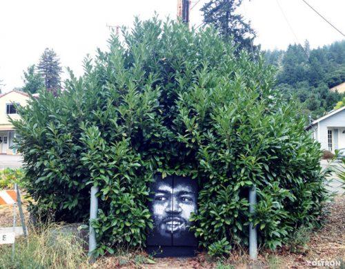 graffiti haardracht