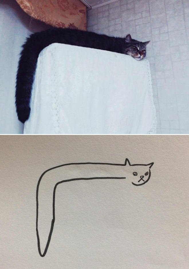 getekende kat