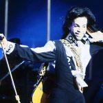 Prince Paars: nieuwe kleur van Pantone