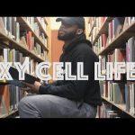 Biologieles op muziek