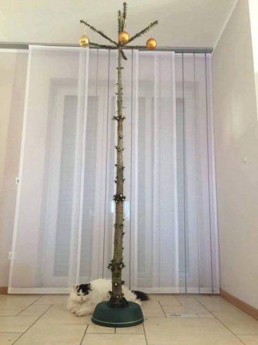 kerstboom voor kattenliefhebbers