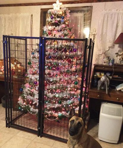 kerstboom in een kooi