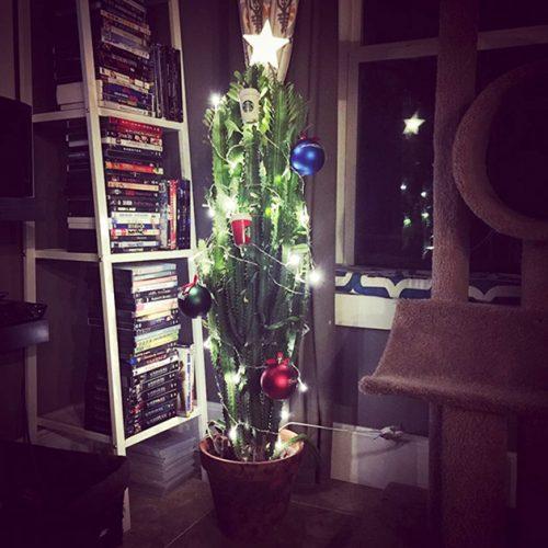 bescherm je kerstboom