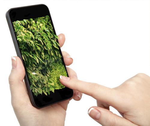 groene smartphone