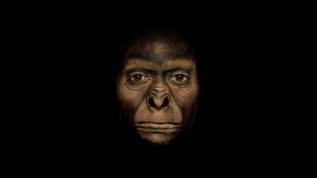 Evolutie van de mens op een gezicht geschilderd
