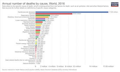 waar gaan de meeste mensen dood aan