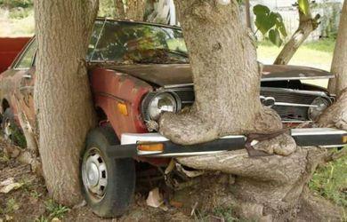 boom eet auto
