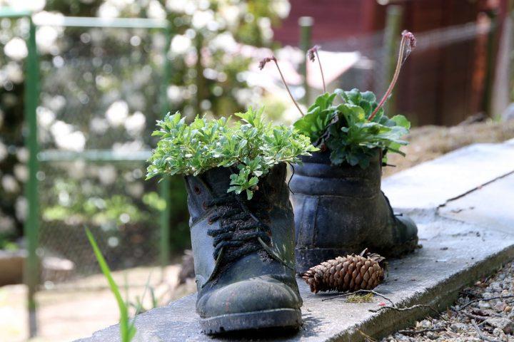 Schoenen als plantenbak: recycling én kunst