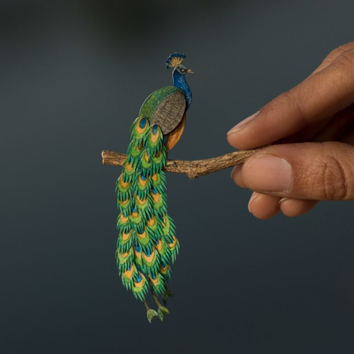 miniatuur vogel