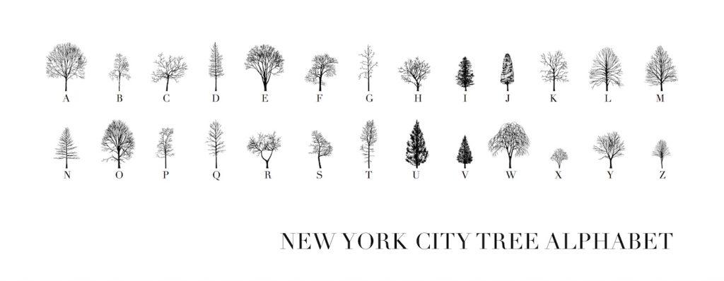 schrijven met bomen