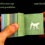 Flipboek toont evolutie van de mens