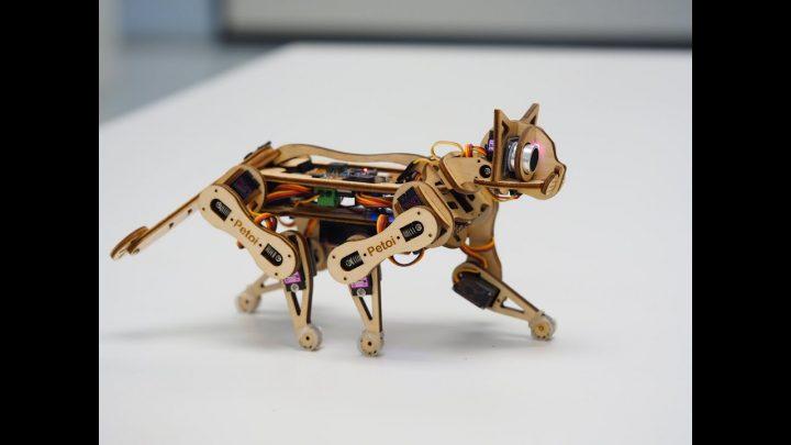 Nybble de robotkat