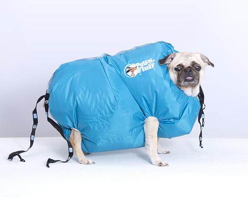 Droogsysteem voor stinkende en natte honden