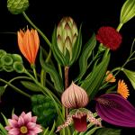 Het verhaal van bloemen in een video