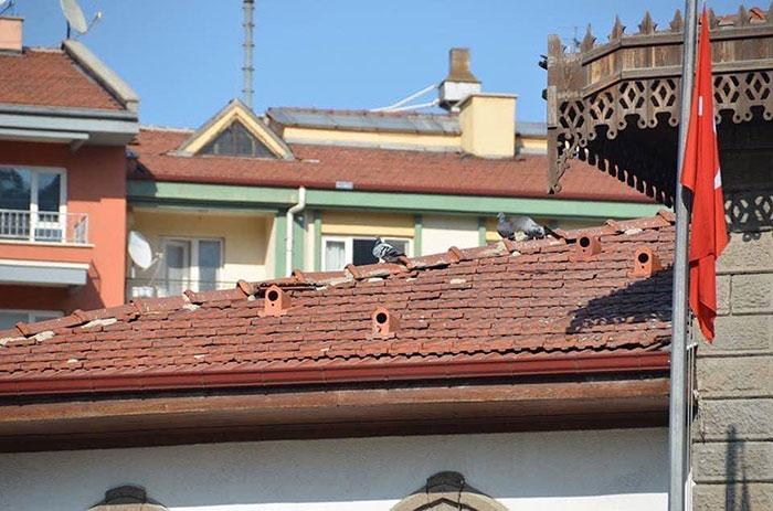 vogelhuis dakpannen
