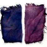 Het recept van de middeleeuwse blauwpaarse kleurstof is eindelijk ontrafeld