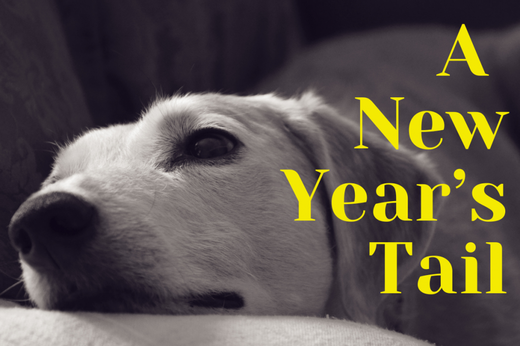 A New Year's Tail