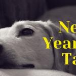 A New Year's Tail: 10 uur durende film voor honden