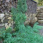Groen landschap van frisdrankflessen