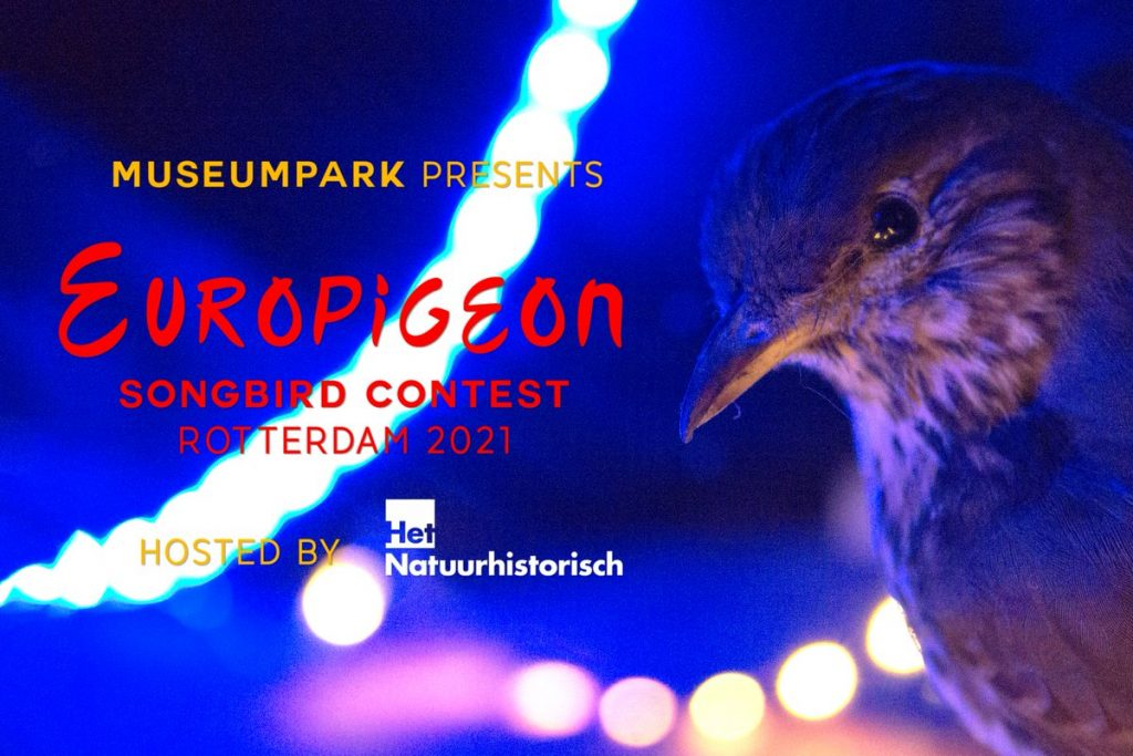 Europigeon Songbird Contest